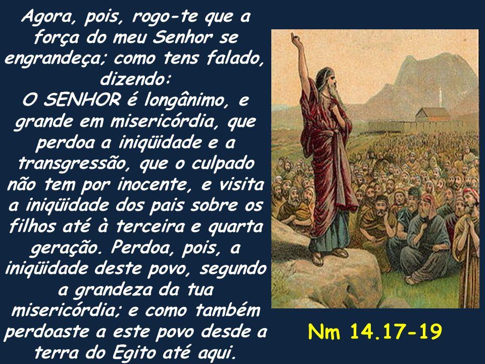 Agora, pois, rogo-te que a força do meu Senhor se engrandeça; como tens falado, dizendo: O SENHOR é longânimo, e grande em misericórdia, que perdoa a iniqüidade e a transgressão, que o culpado não tem por inocente, e visita a iniqüidade dos pais sobre os filhos até à terceira e quarta geração. Perdoa, pois, a iniqüidade deste povo, segundo a grandeza da tua misericórdia; e como também perdoaste a este povo desde a terra do Egito até aqui.
