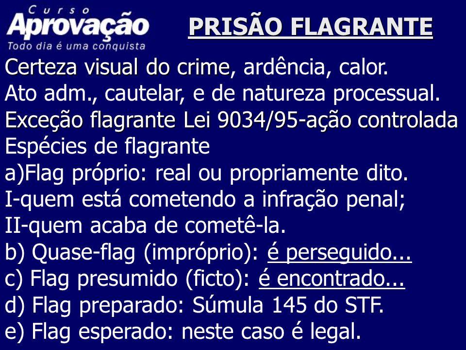 PRISÃO FLAGRANTE Certeza visual do crime, ardência, calor.