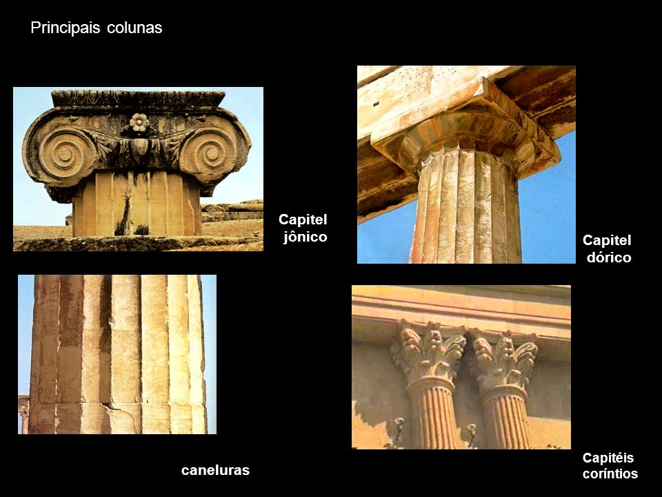 Principais colunas Capitel jônico Capitel dórico caneluras