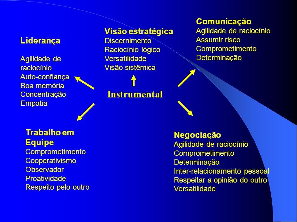 Instrumental Comunicação Visão estratégica Liderança