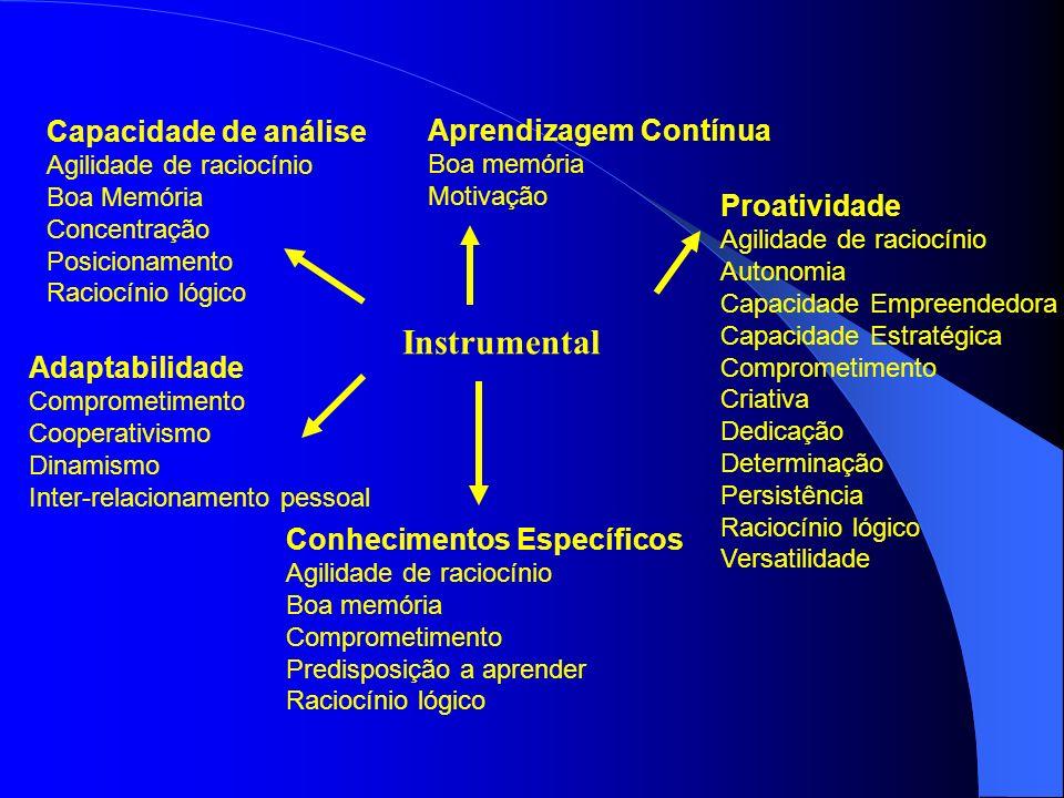 Instrumental Capacidade de análise Aprendizagem Contínua Proatividade