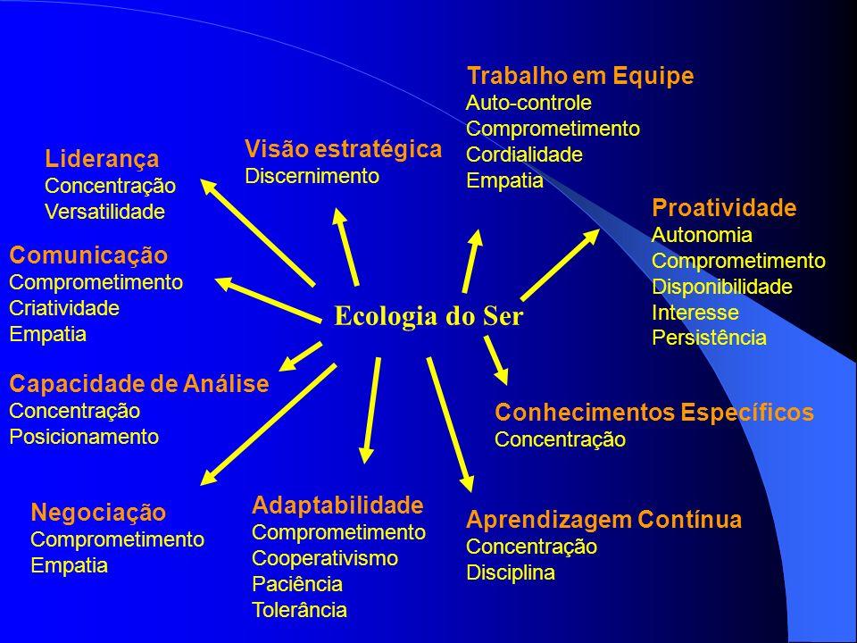 Ecologia do Ser Trabalho em Equipe Visão estratégica Liderança