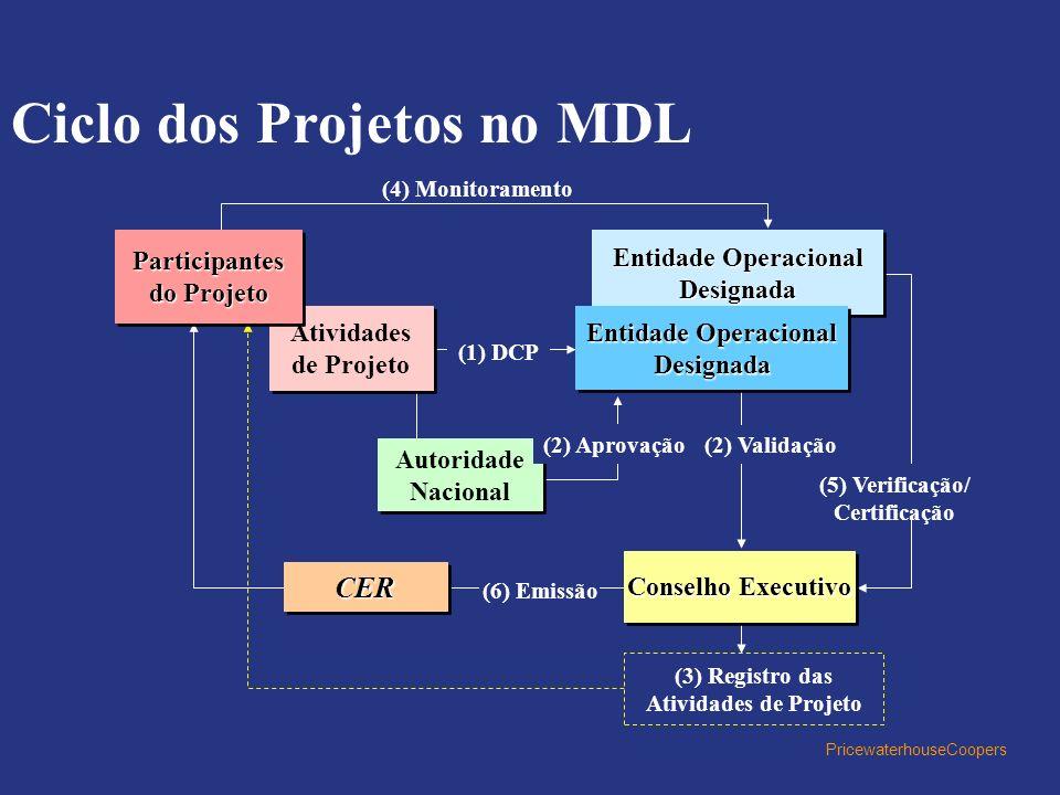 Ciclo dos Projetos no MDL