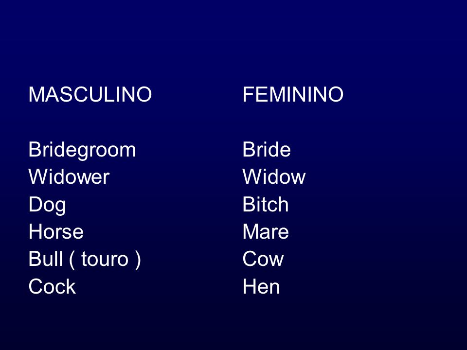 MASCULINO Bridegroom Widower Dog Horse Bull ( touro ) Cock FEMININO Bride Widow Bitch Mare Cow Hen