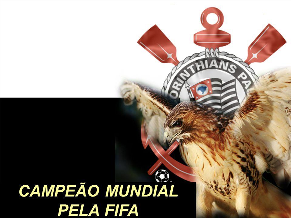 CAMPEÃO MUNDIAL PELA FIFA