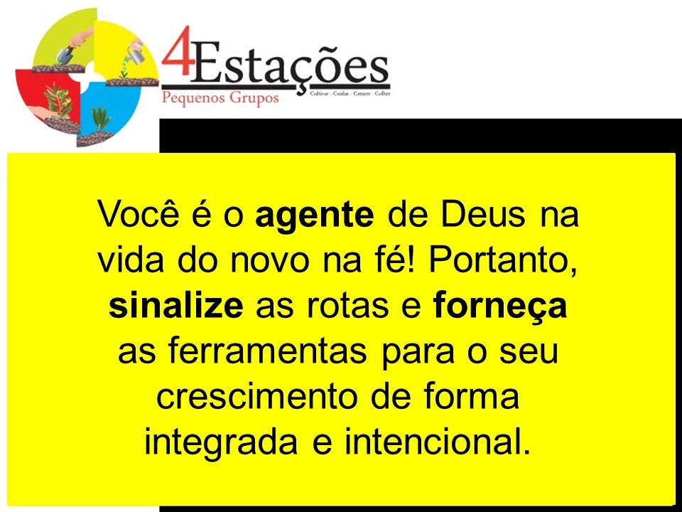 Você é o agente de Deus na vida do novo na fé