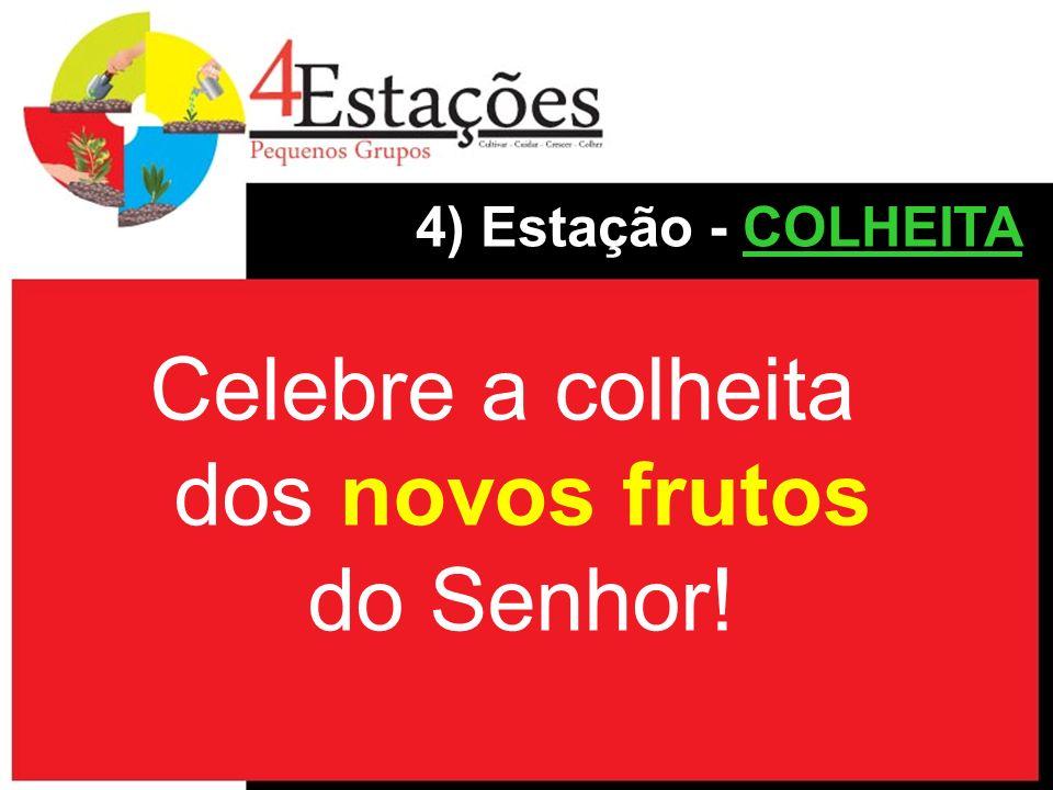 Celebre a colheita dos novos frutos do Senhor!