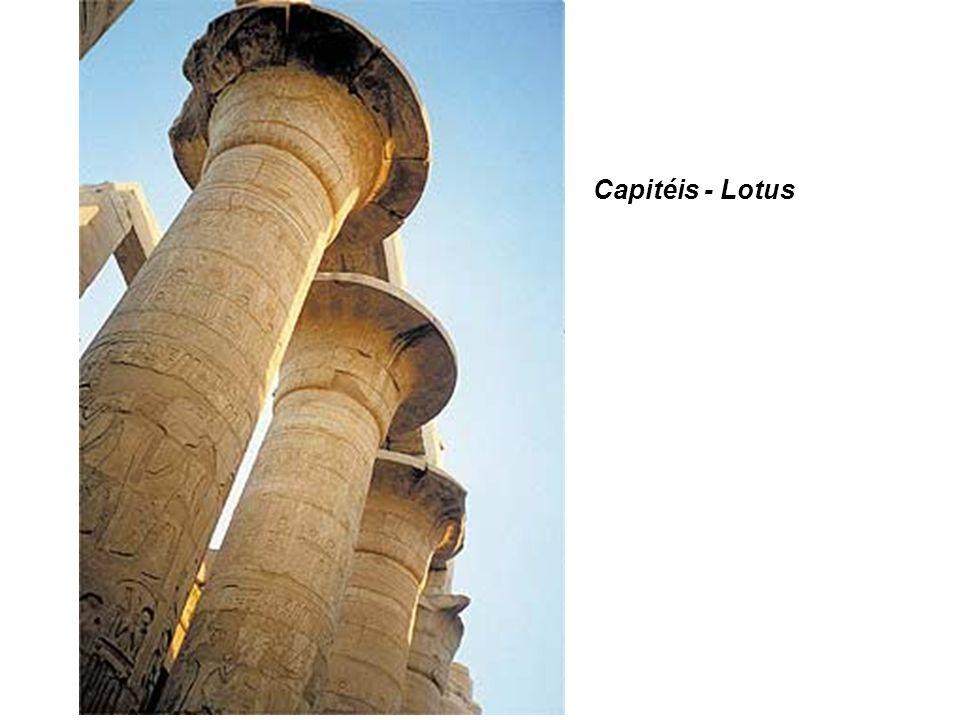 Capitéis - Lotus