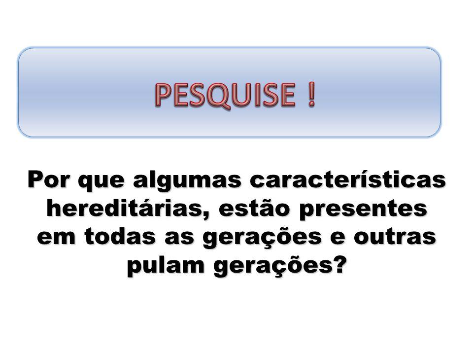 PESQUISE .