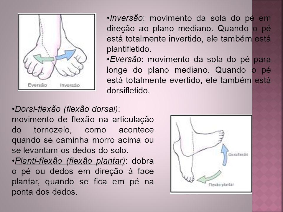 Inversão: movimento da sola do pé em direção ao plano mediano
