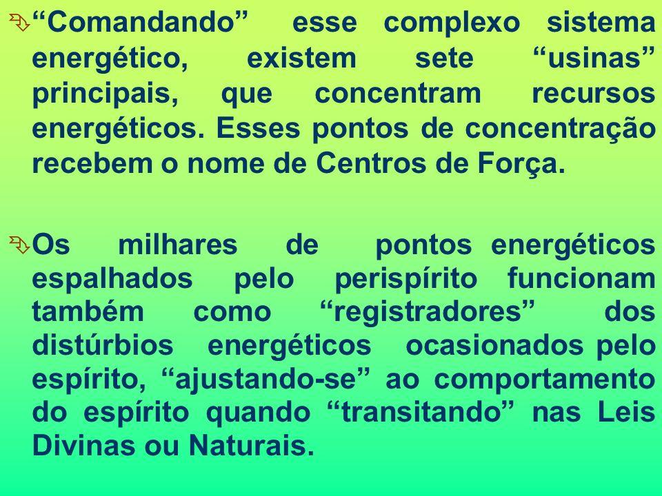 Comandando esse complexo sistema energético, existem sete usinas principais, que concentram recursos energéticos. Esses pontos de concentração recebem o nome de Centros de Força.