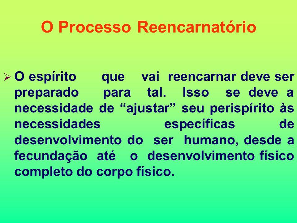 O Processo Reencarnatório
