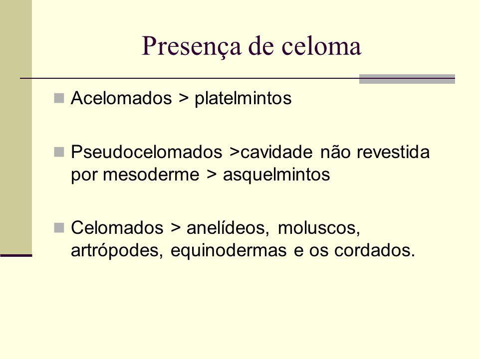 Presença de celoma Acelomados > platelmintos