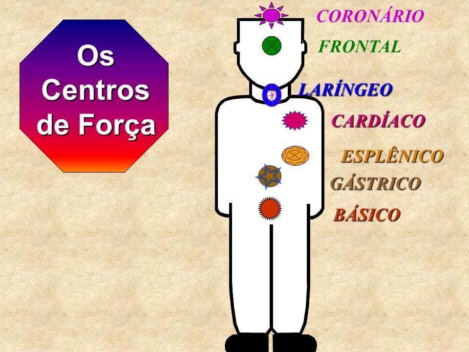Os Centros de Força CORONÁRIO FRONTAL LARÍNGEO CARDÍACO ESPLÊNICO