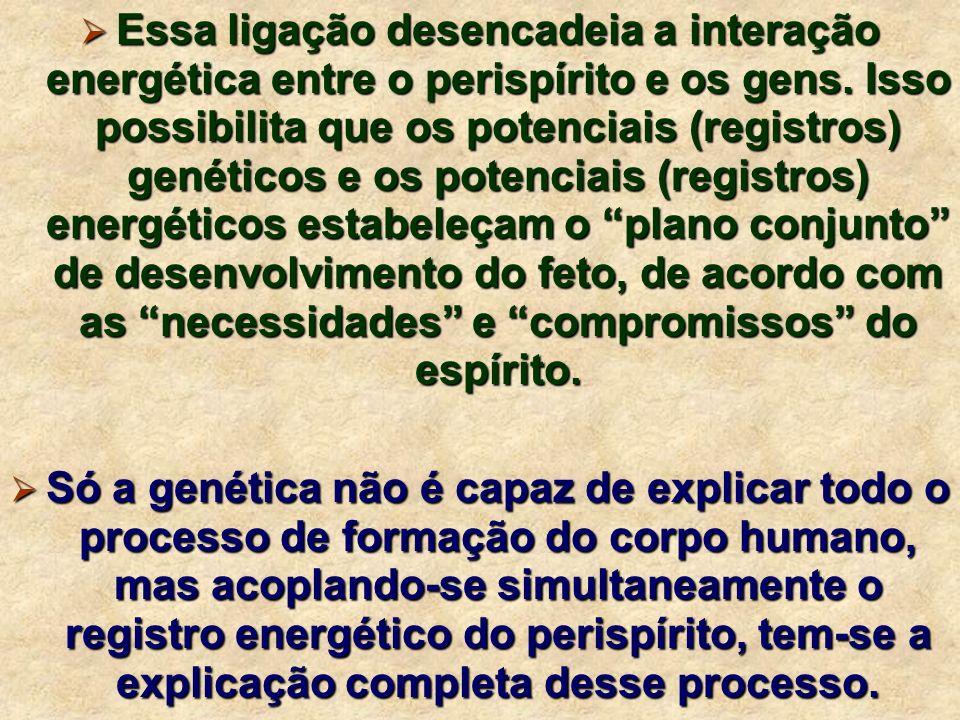 Essa ligação desencadeia a interação energética entre o perispírito e os gens. Isso possibilita que os potenciais (registros) genéticos e os potenciais (registros) energéticos estabeleçam o plano conjunto de desenvolvimento do feto, de acordo com as necessidades e compromissos do espírito.