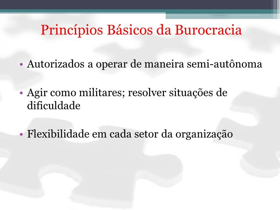 Princípios Básicos da Burocracia