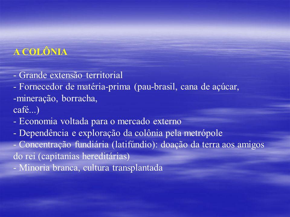A COLÔNIA Grande extensão territorial. Fornecedor de matéria-prima (pau-brasil, cana de açúcar, mineração, borracha,