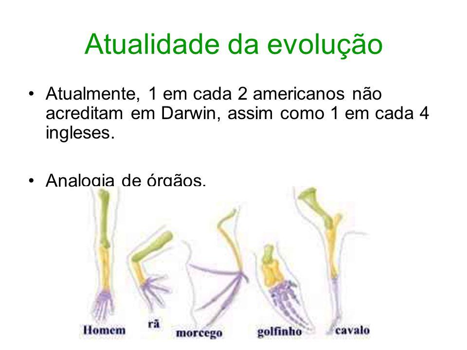 Atualidade da evolução