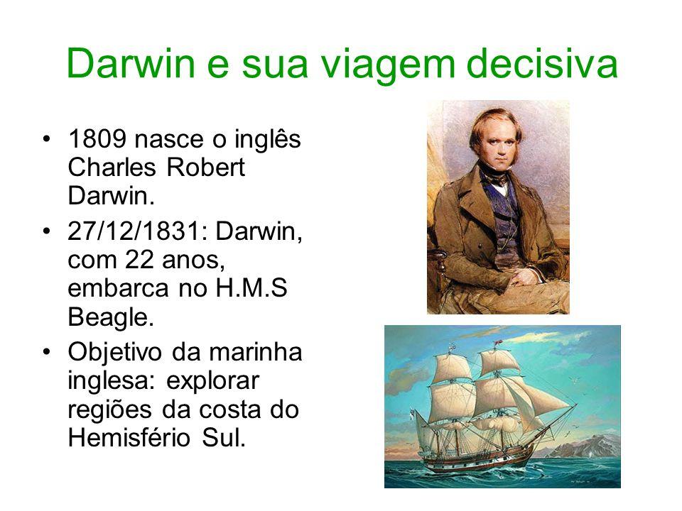 Darwin e sua viagem decisiva