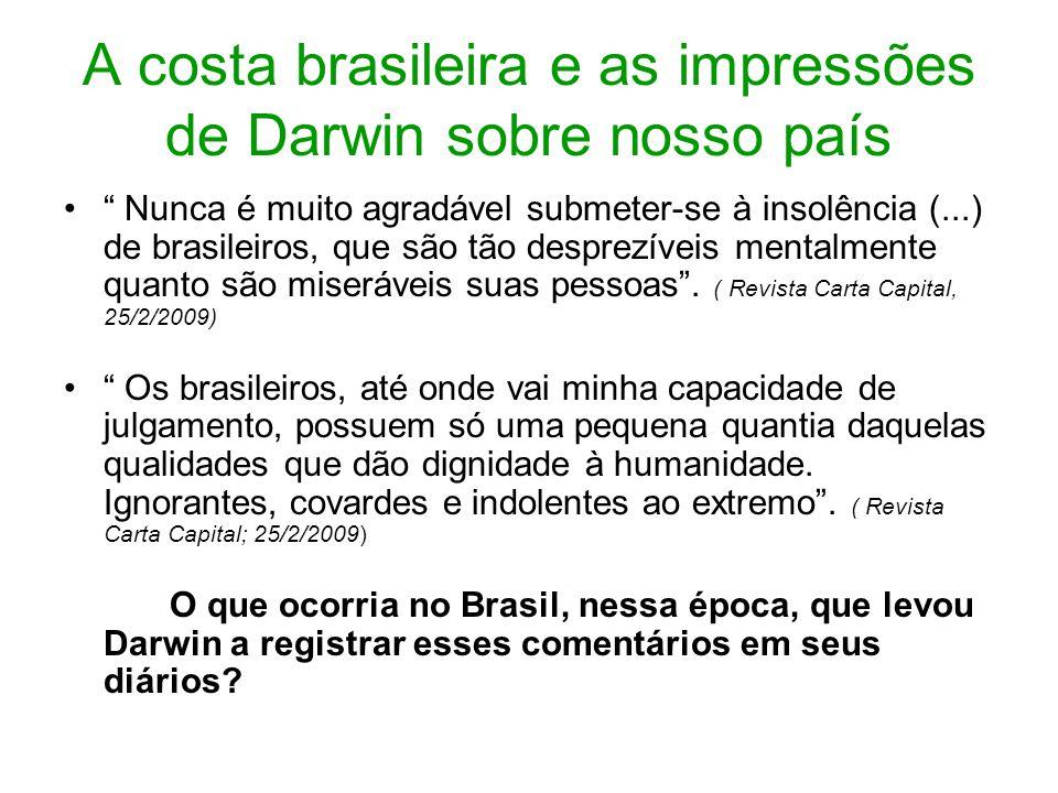 A costa brasileira e as impressões de Darwin sobre nosso país