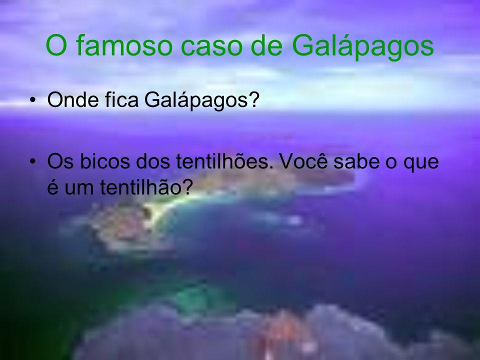 O famoso caso de Galápagos