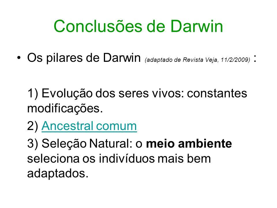 Conclusões de Darwin Os pilares de Darwin (adaptado de Revista Veja, 11/2/2009) : 1) Evolução dos seres vivos: constantes modificações.