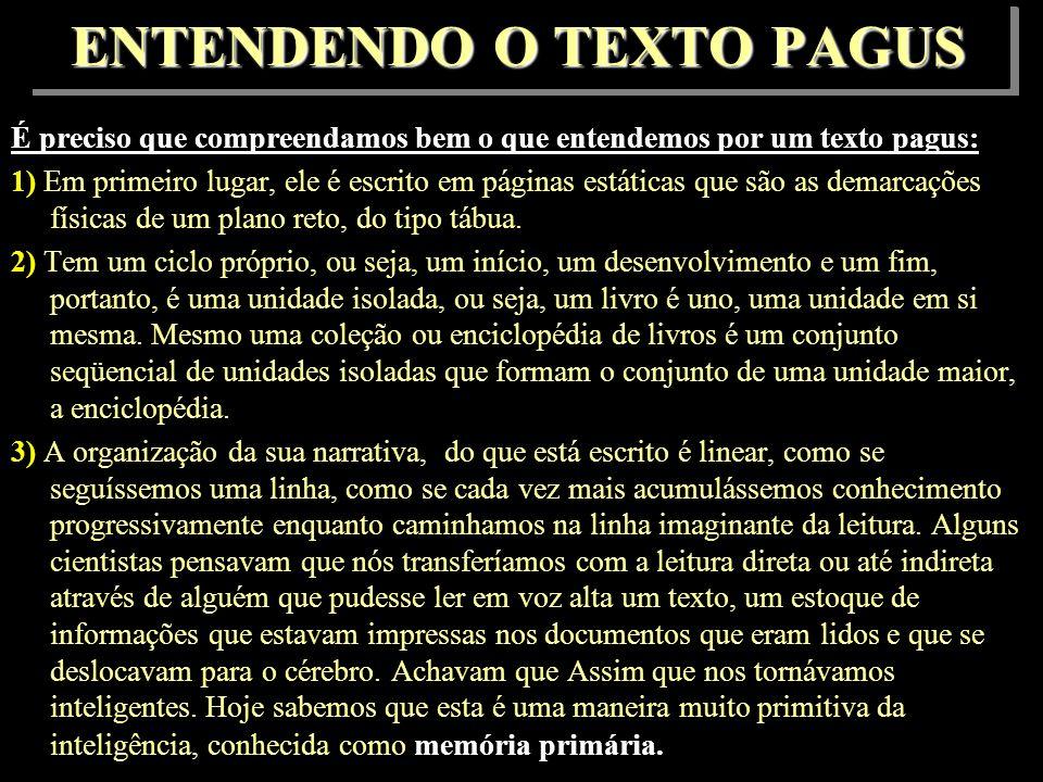 ENTENDENDO O TEXTO PAGUS
