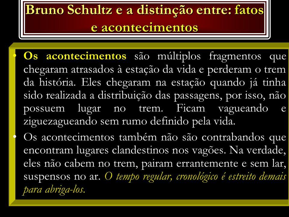 Bruno Schultz e a distinção entre: fatos e acontecimentos