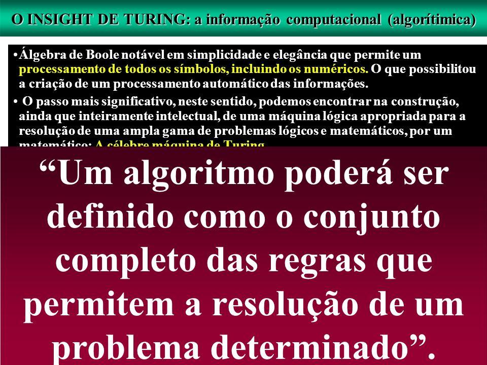 O INSIGHT DE TURING: a informação computacional (algorítimica)