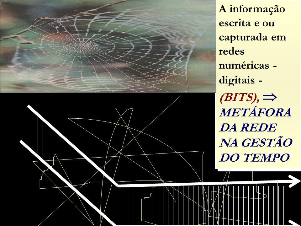 A informação escrita e ou capturada em redes numéricas - digitais - (BITS),  METÁFORA DA REDE NA GESTÃO DO TEMPO
