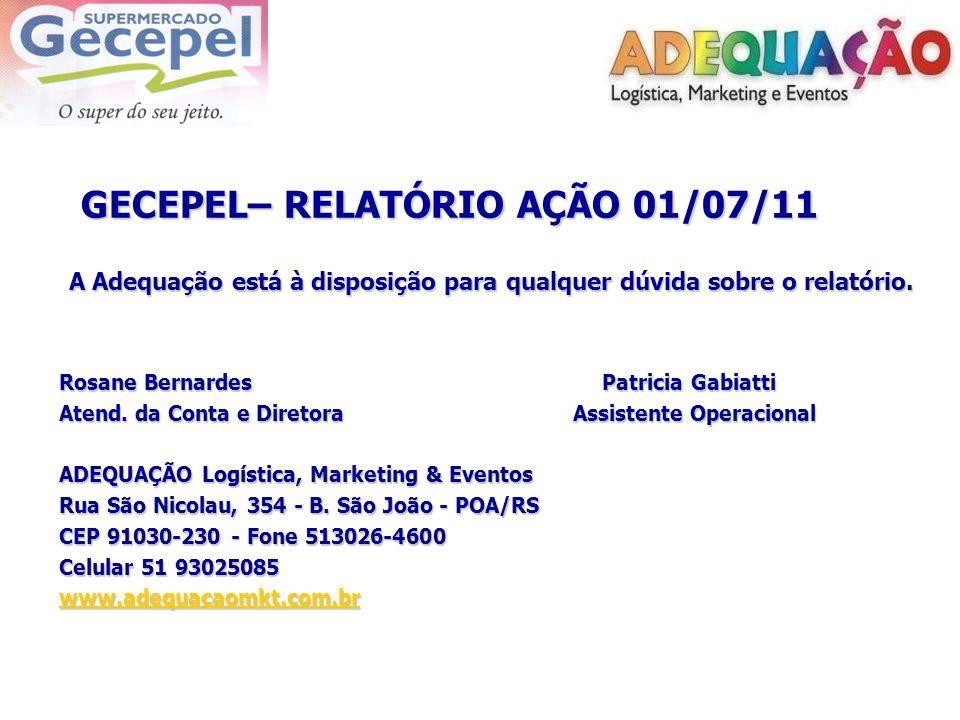 GECEPEL– RELATÓRIO AÇÃO 01/07/11