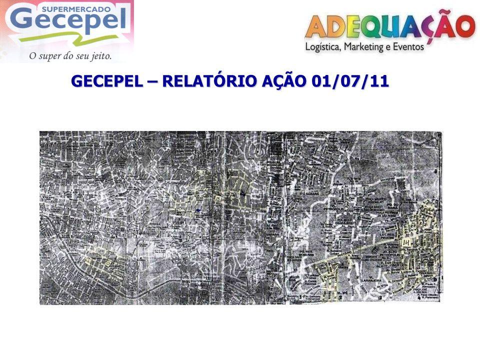 GECEPEL – RELATÓRIO AÇÃO 01/07/11