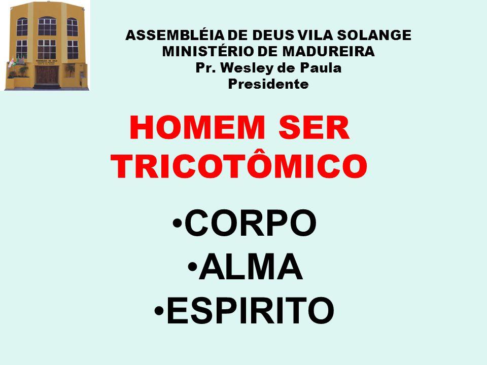 CORPO ALMA ESPIRITO HOMEM SER TRICOTÔMICO