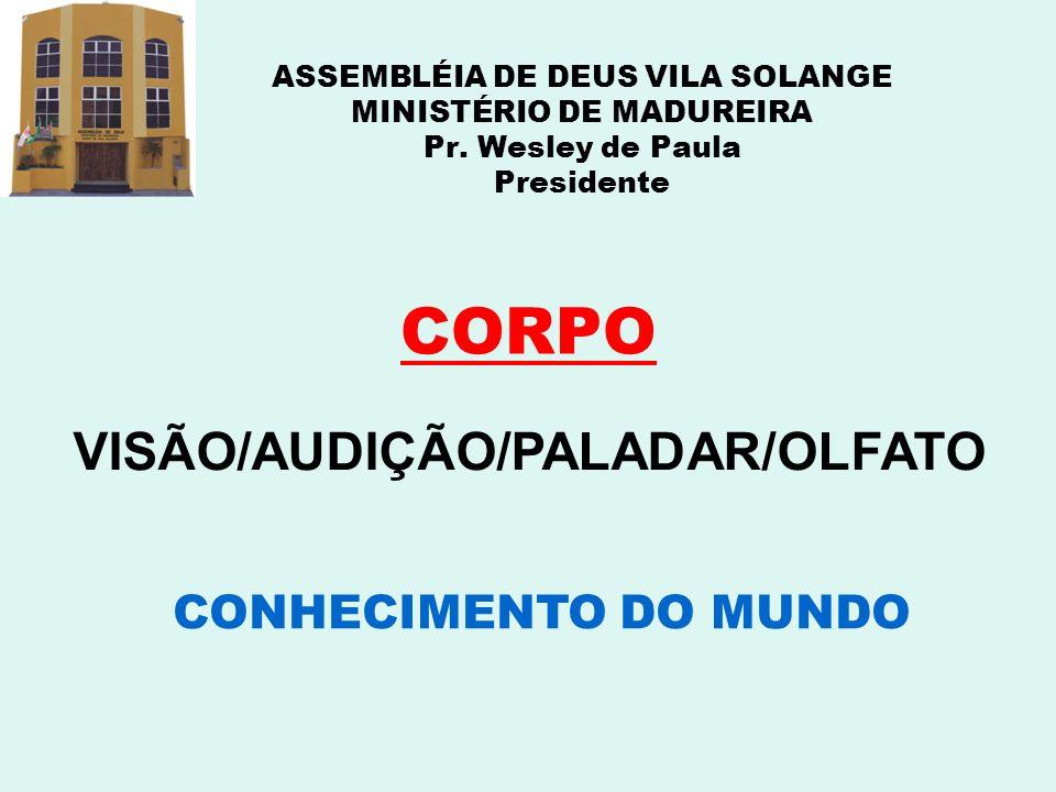 CORPO VISÃO/AUDIÇÃO/PALADAR/OLFATO CONHECIMENTO DO MUNDO