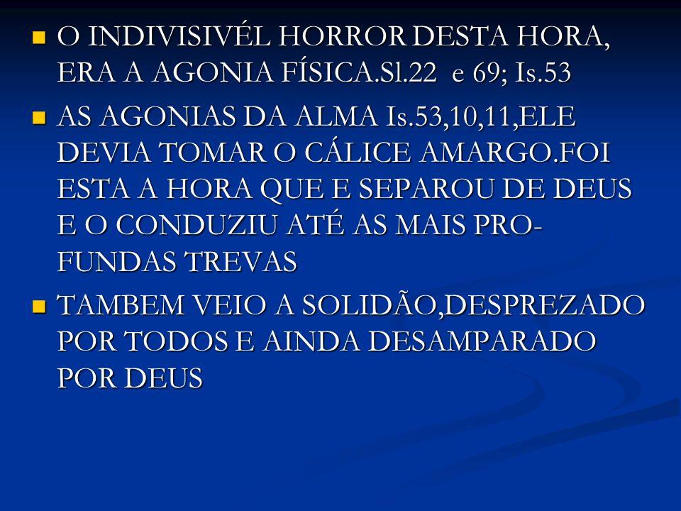 O INDIVISIVÉL HORROR DESTA HORA, ERA A AGONIA FÍSICA.Sl.22 e 69; Is.53