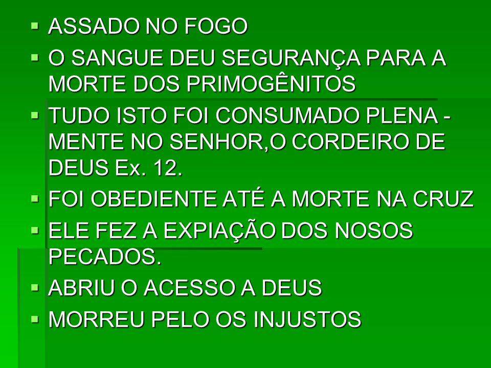 ASSADO NO FOGO O SANGUE DEU SEGURANÇA PARA A MORTE DOS PRIMOGÊNITOS. TUDO ISTO FOI CONSUMADO PLENA -MENTE NO SENHOR,O CORDEIRO DE DEUS Ex. 12.