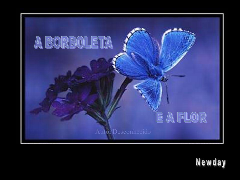 A BORBOLETA E A FLOR Autor Desconhecido Newday