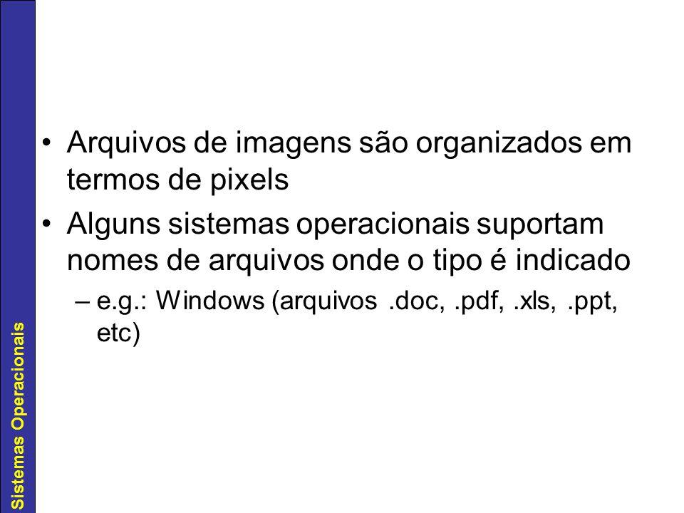 Arquivos de imagens são organizados em termos de pixels