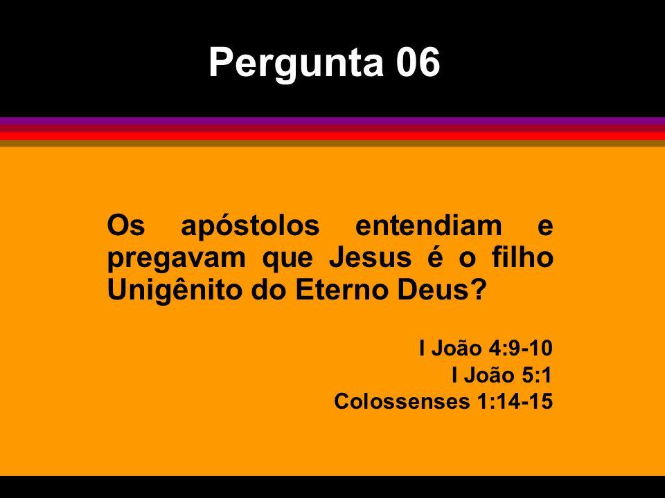 Pergunta 06 Os apóstolos entendiam e pregavam que Jesus é o filho Unigênito do Eterno Deus I João 4:9-10.