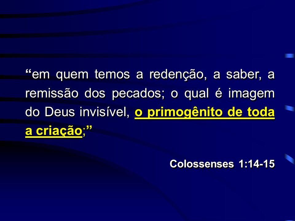 em quem temos a redenção, a saber, a remissão dos pecados; o qual é imagem do Deus invisível, o primogênito de toda a criação;