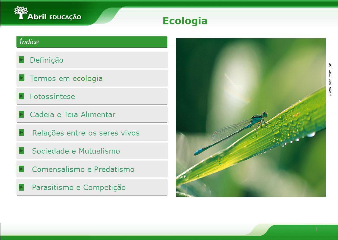 Ecologia Definição Termos em ecologia Fotossíntese