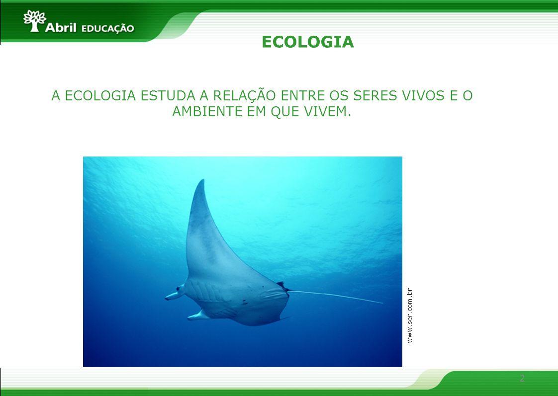 ECOLOGIA A ECOLOGIA ESTUDA A RELAÇÃO ENTRE OS SERES VIVOS E O AMBIENTE EM QUE VIVEM. www.ser.com.br