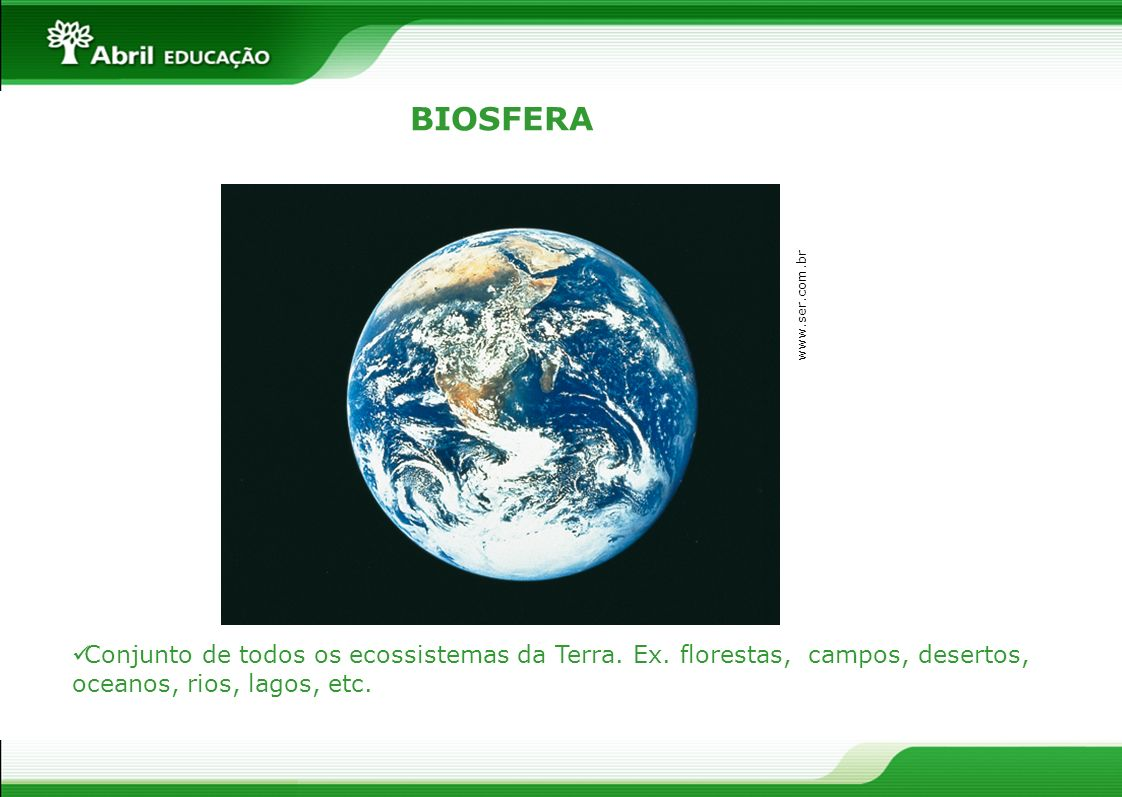 BIOSFERA www.ser.com.br. Conjunto de todos os ecossistemas da Terra.
