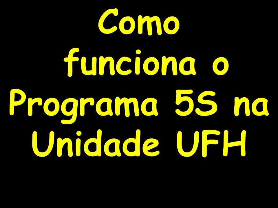 funciona o Programa 5S na Unidade UFH
