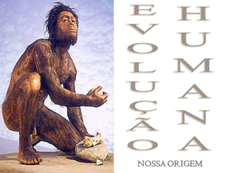 EVOLUÇÃO HUMANA NOSSA ORIGEM