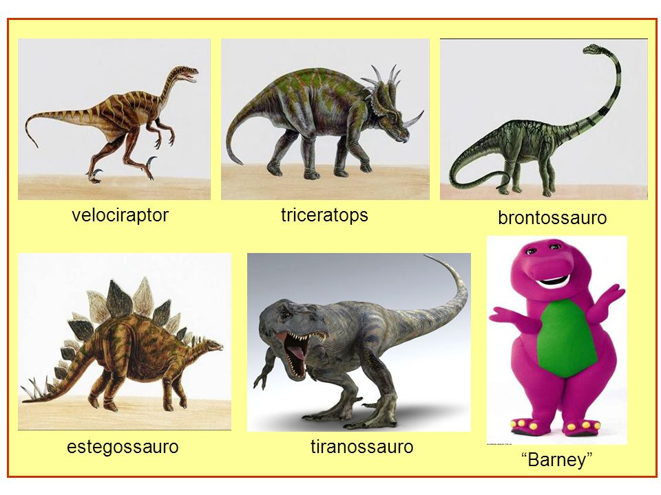 velociraptor triceratops brontossauro estegossauro tiranossauro Barney