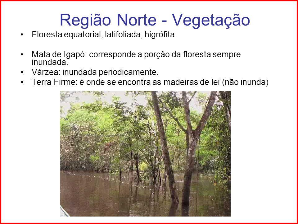 Região Norte - Vegetação