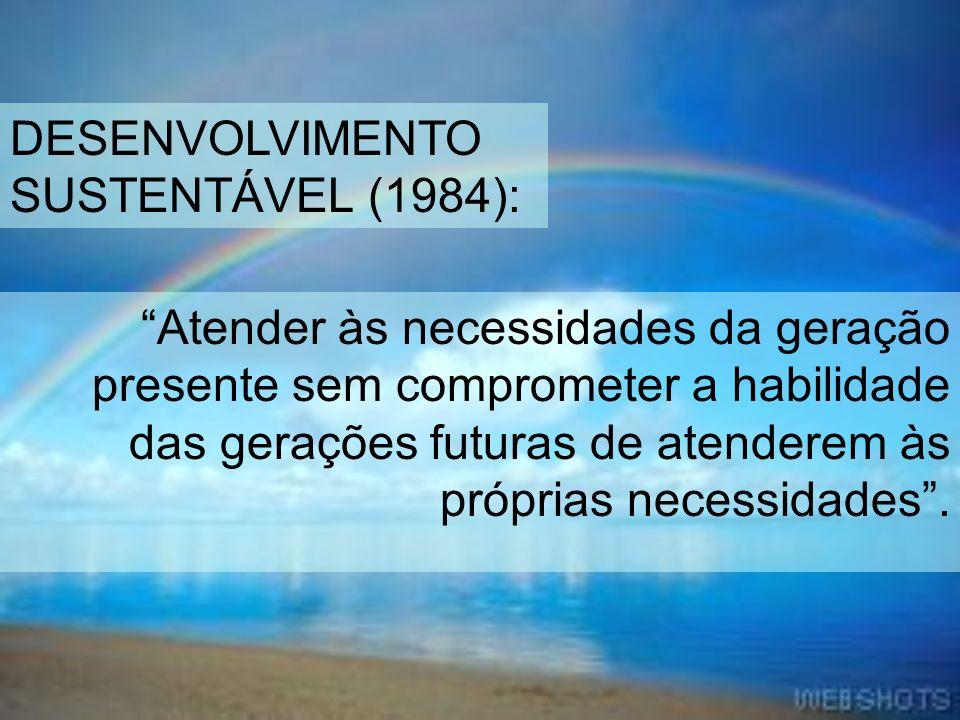 DESENVOLVIMENTO SUSTENTÁVEL (1984):