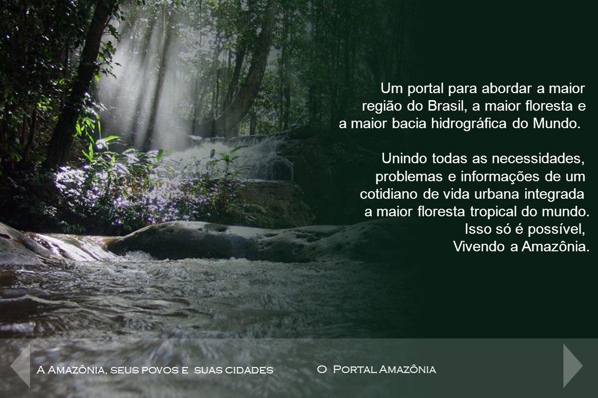 O Portal Amazônia Um portal para abordar a maior
