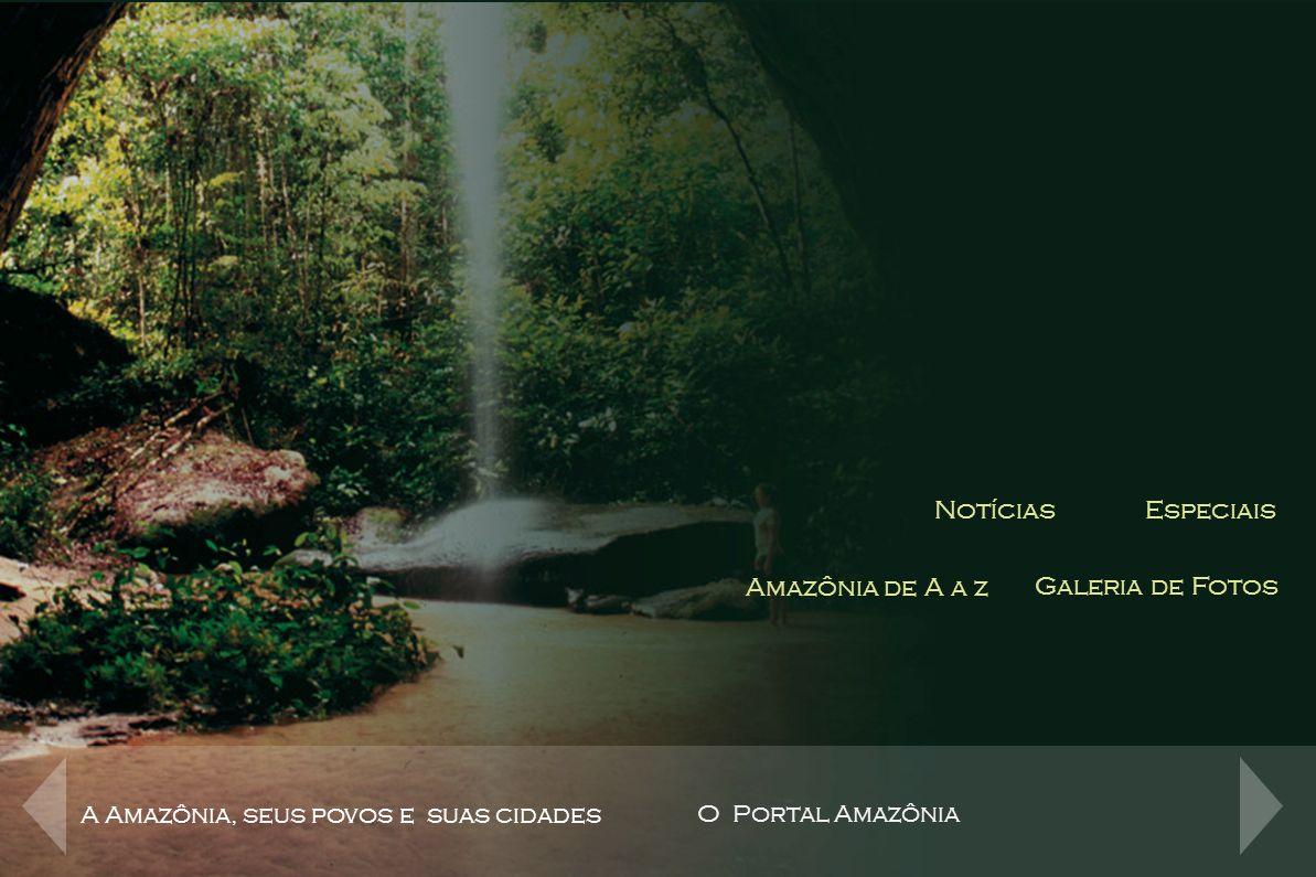 Canais de Conteúdo Notícias Especiais Amazônia de A a z